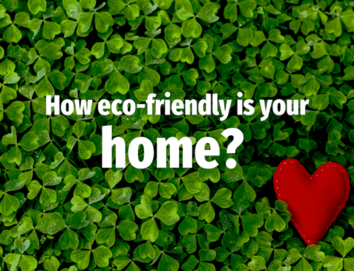 How Eco-friendly are Marple Homes?